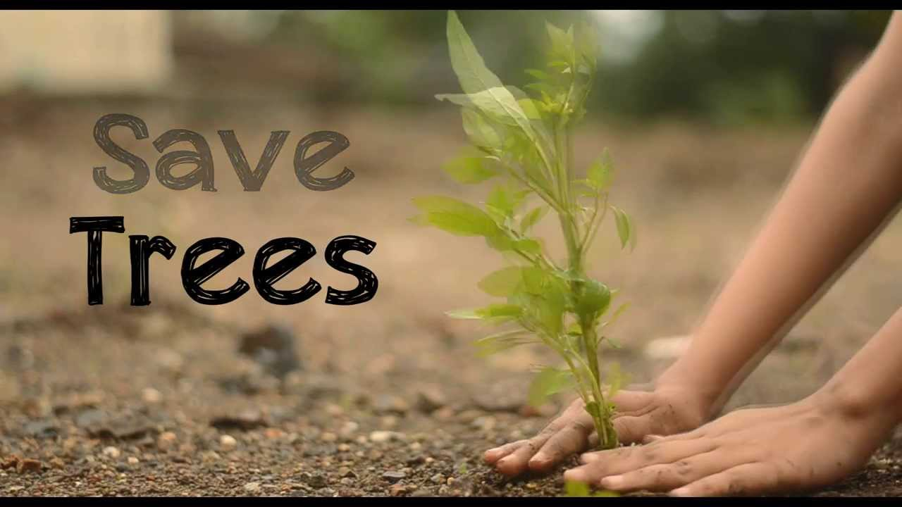 save trees save nature Product features design i just want to save the bees, plant trees and protect the seas.
